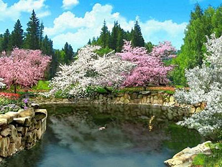 3D Spring Blossoms